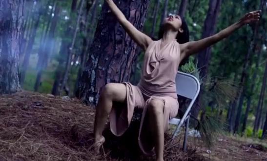 Recitativ-aria-scherzo, novo vídeo de Roberto Alonso