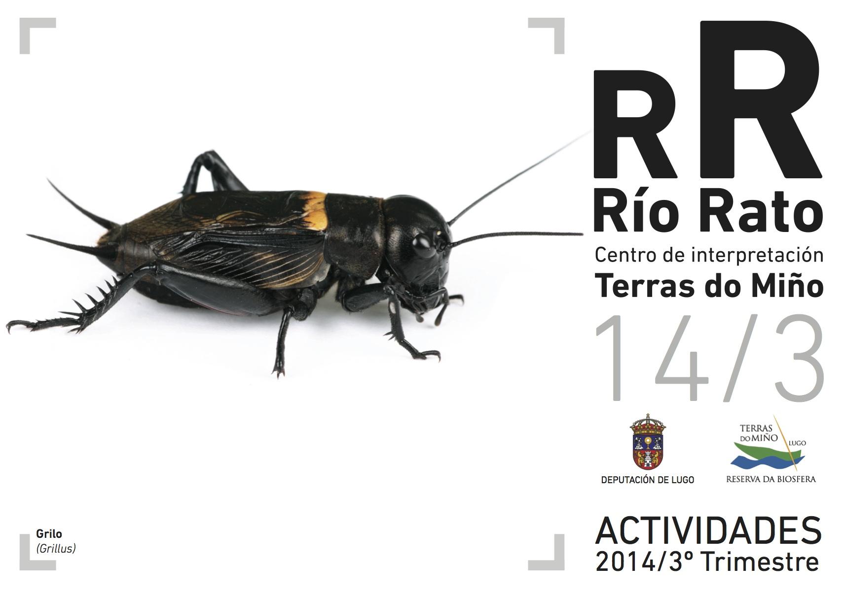 Paseos nocturnos, cociña, relaxación… o verán no Río Rato