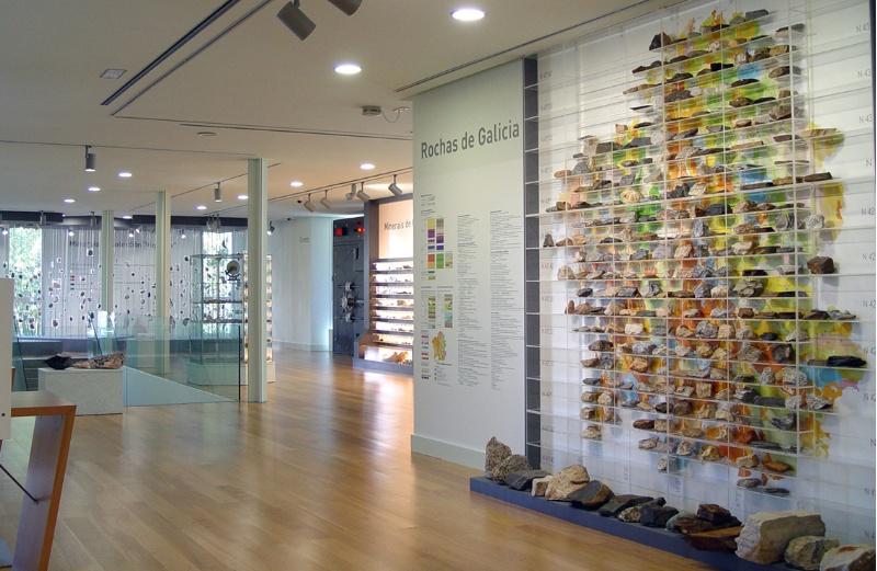 Novo Museo de Historia Natural en Compostela